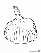 Garlic Coloring Colorir Ajo Alho Sayur Verduras Desenho Sayuran Colorear Desenhos Dibujos Imprimir Dibujo Allium Drawing Frutas Ausmalen Zum Dibujoswiki sketch template