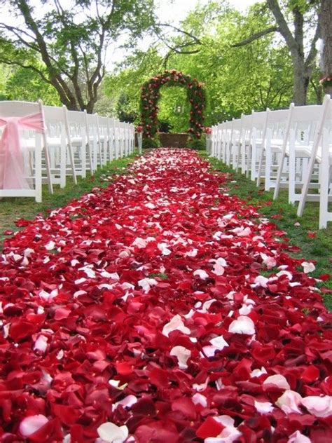 417 Best Wedding Aisles With Rose Petals Images On Pinterest