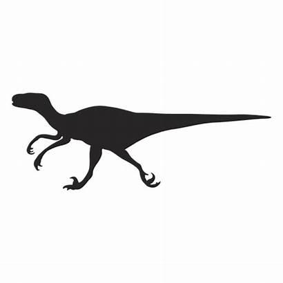 Velociraptor Svg Silhouette Silueta Silhueta Transparent Dinosaurio