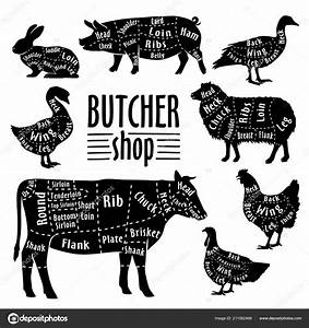 Cut Of Animals Meat  Diagram For Butcher  Meat Cut Set