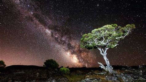 Nature Sky Night Milky Way Stars Landscape Trees