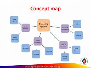 Endocrine System Concept Map Hbs Pictures to Pin on ...