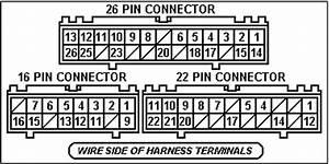 Wiring Diagram Ecu Toyota Vios  Toyota  Wiring Diagrams Instructions