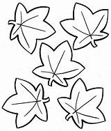 Maple Coloring Syrup Pages Leaf Printable Print Getcolorings Shapes sketch template