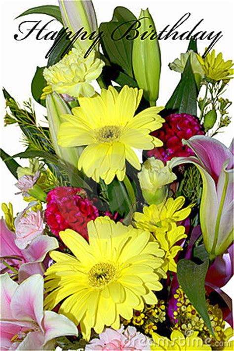 happy birthday flowers isolated stock images image