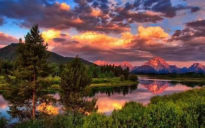 Forest Mountain Summer Nature River Clouds Dog