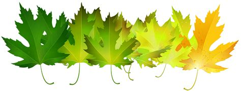 green autumn leaves transparent clip art image gallery