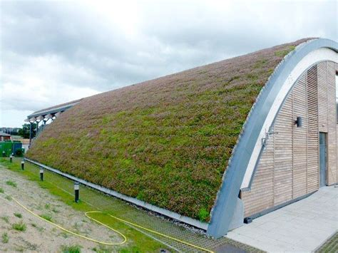 eco green roof bailey s green roof solution for golf club