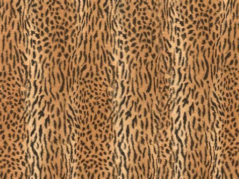 Animal Skin Wallpaper - animal skin patterns animal print wallpapers and animal