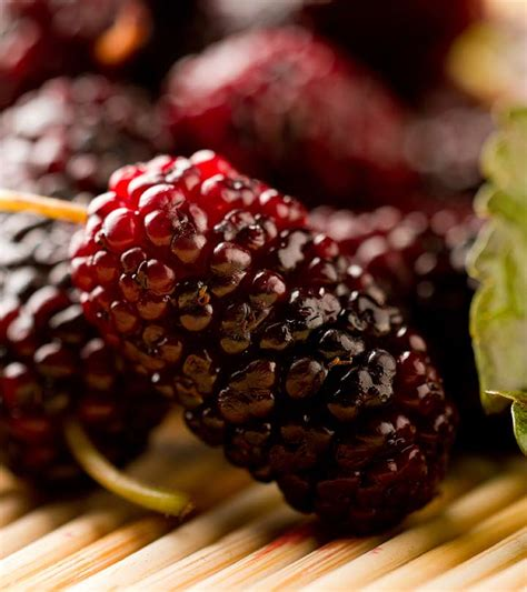 23 Amazing Benefits Of Mulberries (Shahtoot) For Skin ...