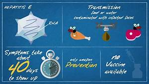 Hepatitis E - T... Hepatitis A Transmission