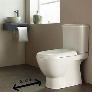 Comment Transformer Ses Wc En Espace Déco : choisir une cuvette wc choix sanitaire toilettes ~ Melissatoandfro.com Idées de Décoration