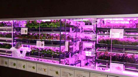 urban vegetable garden system  led lighting robohub