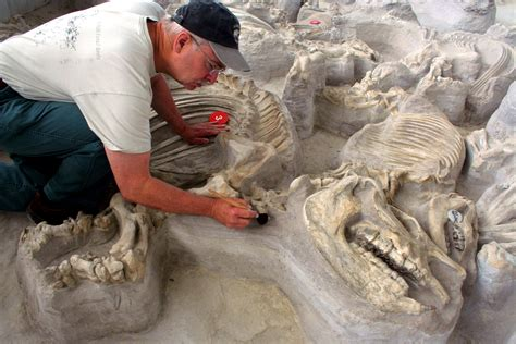 travel northeast nebraska ashfall fossil beds state