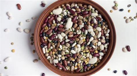 cuisine roborative haricots secs bien les choisir et bien les cuisiner