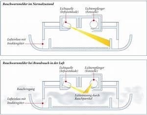 Rauchmelder Batterie Wechseln : minol beantwortet fragen zu rauchwarnmeldern minol ~ A.2002-acura-tl-radio.info Haus und Dekorationen