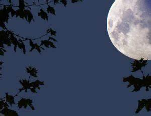 Jardiner Avec La Lune : jardiner avec la lune ~ Farleysfitness.com Idées de Décoration