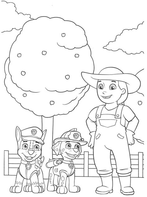 bojanke za decu patrolne šape