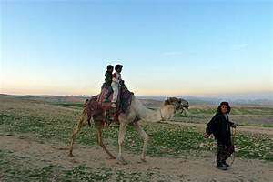Middle East Nomads Lost In Translation Csmonitor Com