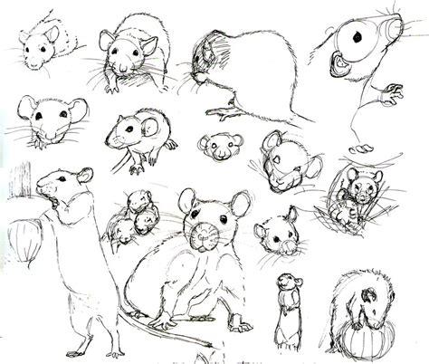 rat practice    mor  deviantart