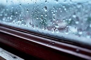 Gesunde Luftfeuchtigkeit In Räumen : luftfeuchtigkeit in r umen die idealen werte ~ Markanthonyermac.com Haus und Dekorationen