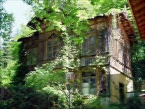 Altes Haus In Portugal Kaufen : altes haus im wald foto bild bearbeitungs techniken ~ Lizthompson.info Haus und Dekorationen