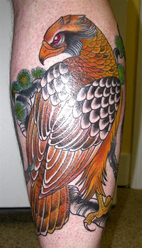 hawk tattoo images pictures  ideas