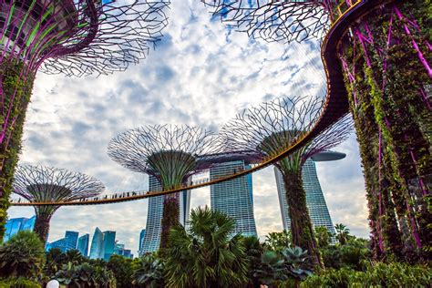 singapore government agency backs new blockchain accelerator coindesk