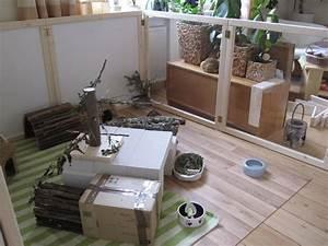 Kaninchengehege Bauen Innen : gehegebeispiele innen kaninchenhilfe deutschland e v aktiv f r kaninchen ~ Frokenaadalensverden.com Haus und Dekorationen