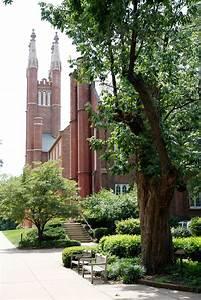 Franklin & Marshall – F&M Seeking Tree Campus USA Status ...