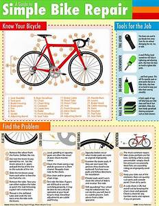 63 Best Bicycle Safety Images On Pinterest