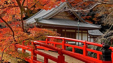 pagoda japan maple desktop pc  mac wallpaper