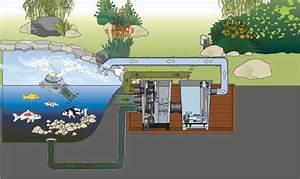 Filtration Biologique Pour Bassin A Poisson : filtre tambour proficlear premium compact egc o fil de ~ Premium-room.com Idées de Décoration