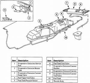 2005 Ford F150 Fuel System Diagram