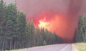 Yellowstone south entrance reopens after closure due to ...