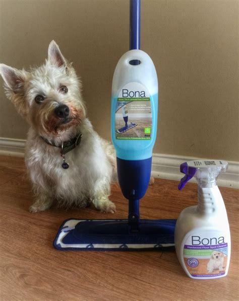 laminate floor cleaners reviews bona laminate floor polish reviews meze blog