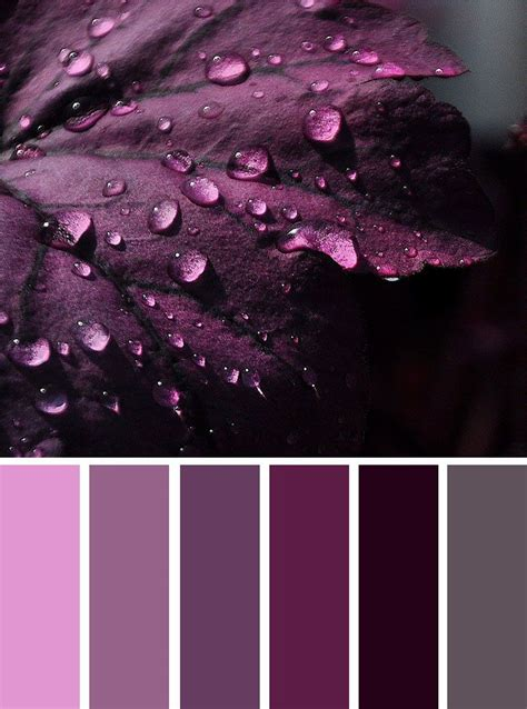 purple grey color color inspiration grey and shades of purple color