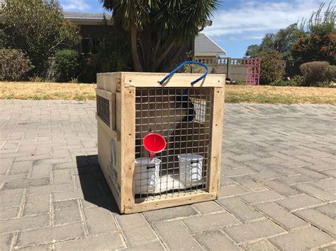 global paws wooden  plastic pet travel crates pet