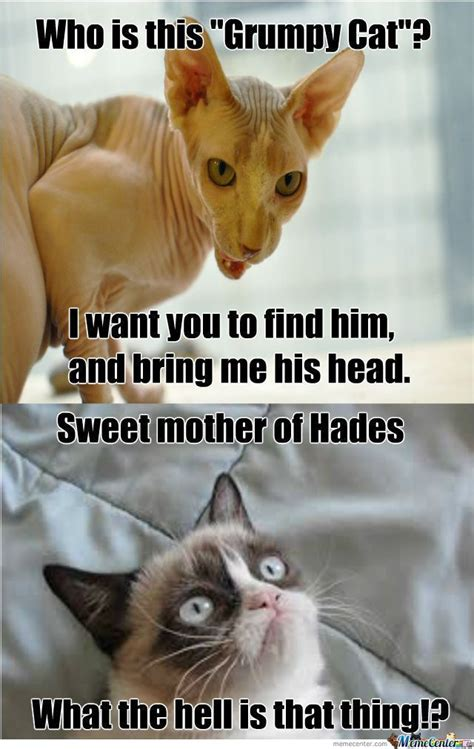 Author cleanmemesposted on july 1, 2019june 26, 2019categories cat memes, clean funny images, clean memes, dog memestags cat memes, clean funny images, clean memes, dog memes. Top 24 Random Funny Memes Clean for Today in 2020 | Funny grumpy cat memes, Funny cat memes ...