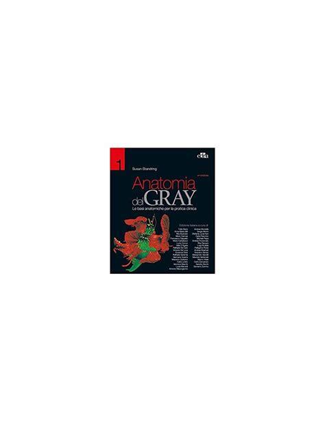 dispense anatomia umana anatomia gray i fondamenti vogl bookservice