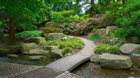 Japanischer Garten Hamburg Veranstaltungen by Japanischer Garten In Hamburg Expedia De