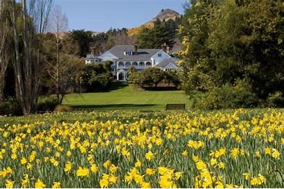 Lodge Zealand Christchurch Luxury Otahuna Daffodil Garden