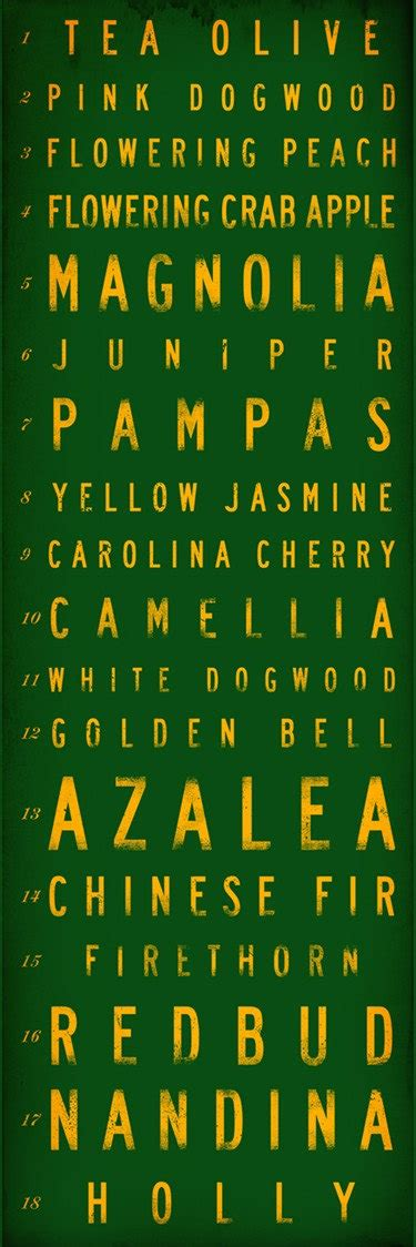 golf course hole names typography masters augusta by geministudio