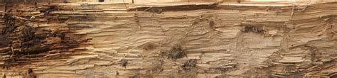 Browsing Bare Wood Category Good Textures