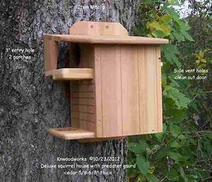 Squirrel nest boxes Houses,Feeders and squirrel facts