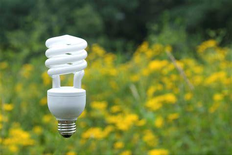 compact fluorescent buzz