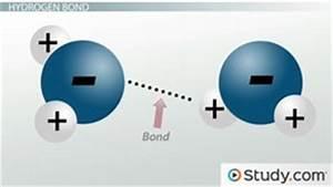VSEPR Theory & Molecule Shapes - Video & Lesson Transcript ...