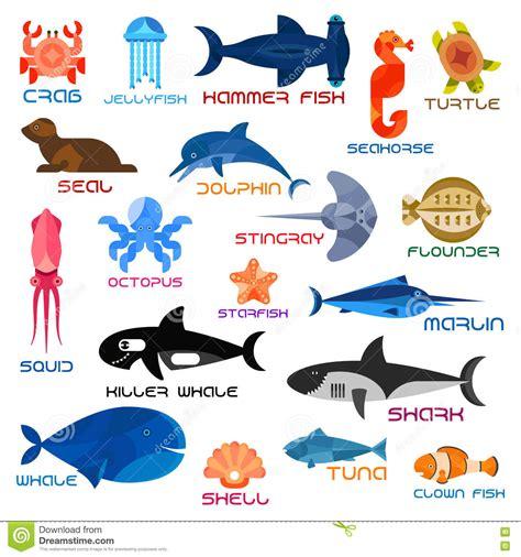 sea fish pictures  names impremedianet