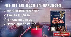 Wie Groß Ist Ein Elch : es ist ein elch entsprungen top rezension trailer ~ Eleganceandgraceweddings.com Haus und Dekorationen