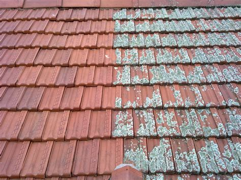 the signs if you need roof restorations am thai kitchen